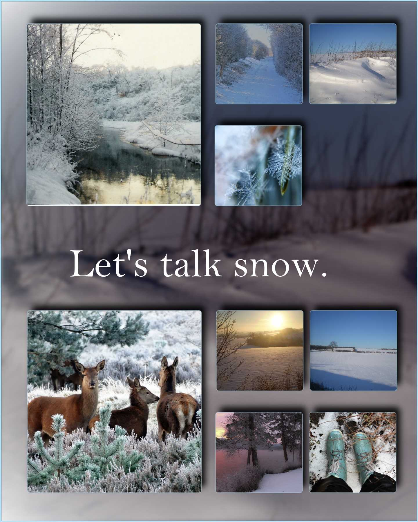 Let's talk snow… it's just a memory.